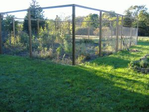 Ten-foot-high fence keeps deer out of Cynthia's garden
