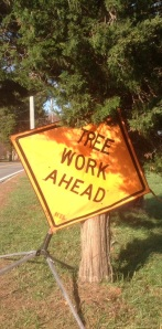 Tree work ahead