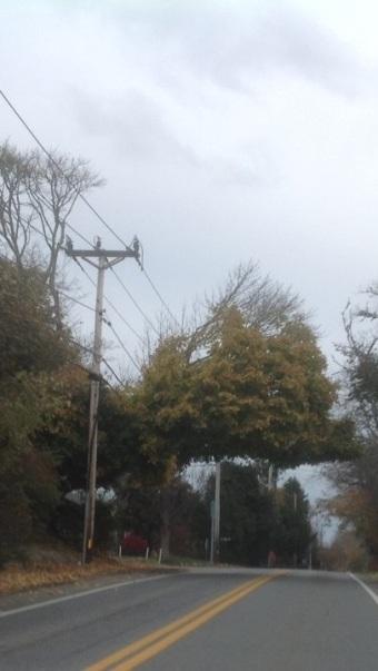 Wires 5 copy 111814a
